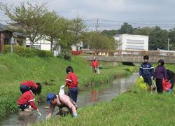 環境実習の様子1