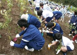 環境実習の様子2