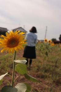 「太陽とわたし」